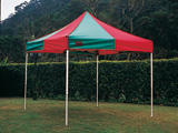 Instant Canopy3X3